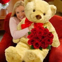 12 RED ROSES WITH BIG TEDDY BEAR