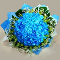 36 Blue Roses Bunch
