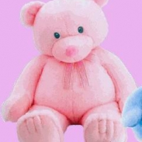 36 inches Pink Teddy