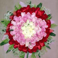 99 Roses ( 15 white 35 peach 49 Red )